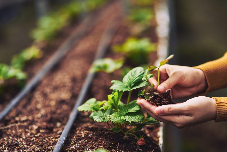 農林水産省/土地改良事業を契機とした農村振興優良事例集