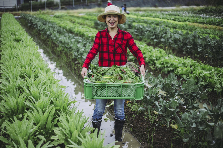 女性農林漁業者向け「支援策活用ガイドブック」