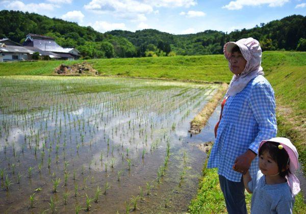 農村現場が開発してきた家族経営協定の特質 〜その多様性や普遍性〜